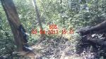 Subject ACP000d5up
