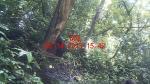 Subject ACP000d9bq