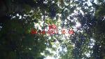 Subject ACP000d9zw