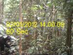 Subject ACP0007h07